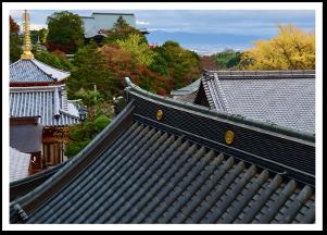 古都奈良の木製家屋の専門屋根修理も対応