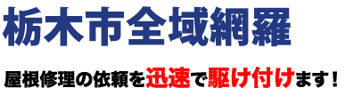 栃木市全域網羅